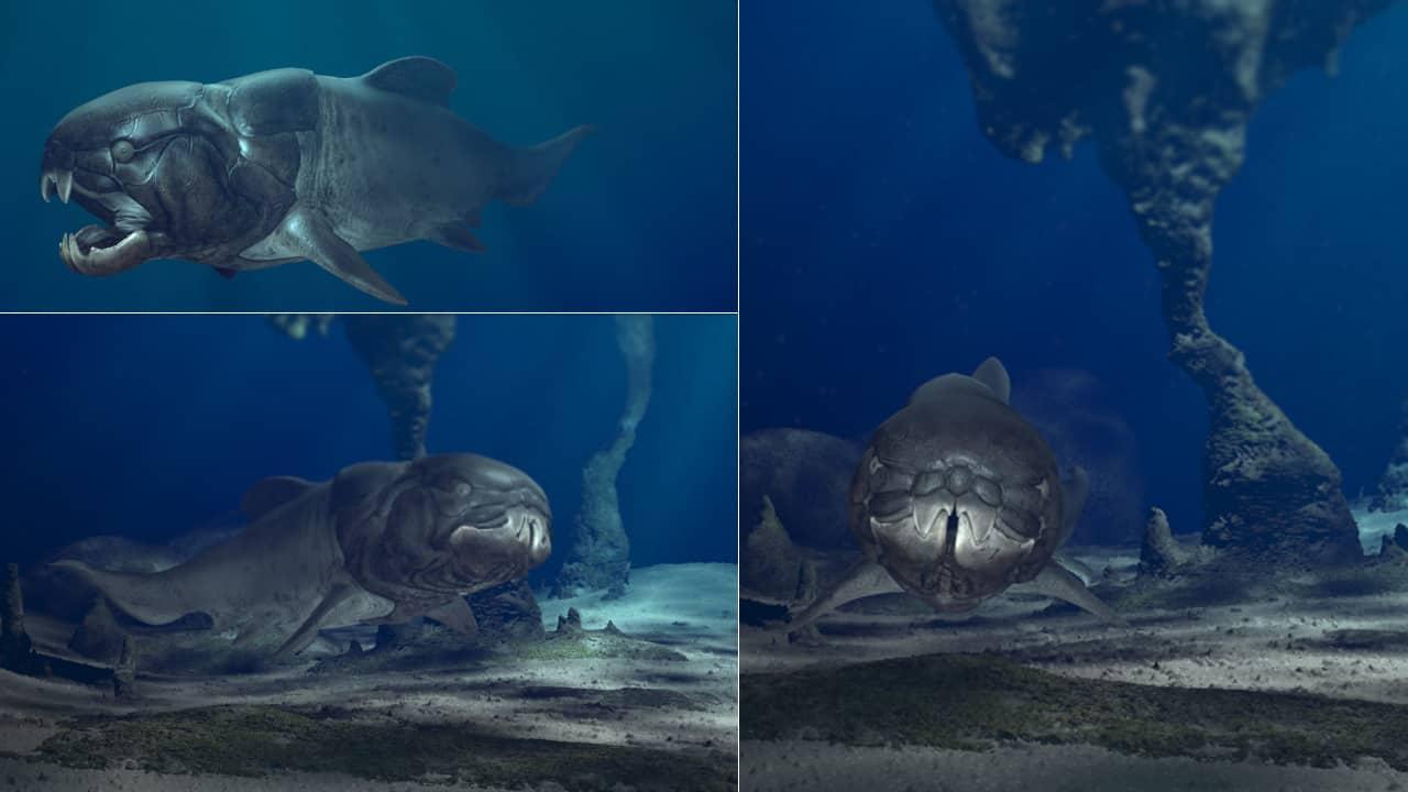 dunkleosteus 3d aquarium 02