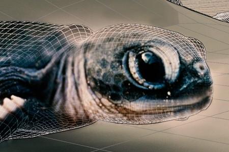 interactive video projection mapping installation – Cretaquarium