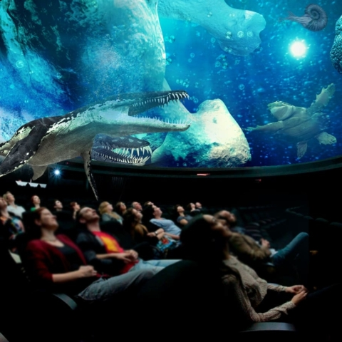 planetarium underwater movie production